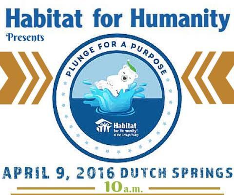 Habitat for Humanity Polar Plunge