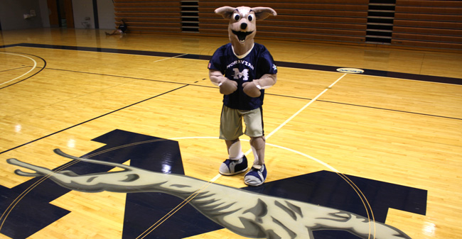 Fun Fact: I've Been a Mascot!